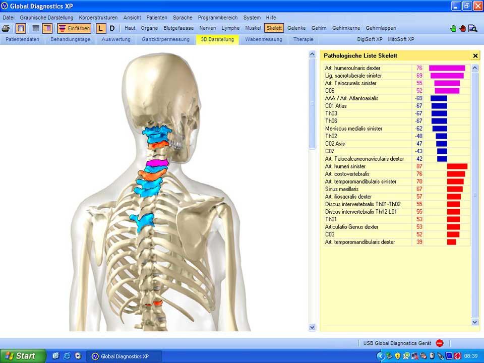 Ziemlich Skelett System Unmarkierte Galerie - Anatomie und ...